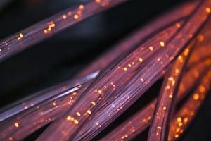 fiber-4814456